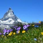 Clases de alemán para españoles y latinoamericanos en Suiza